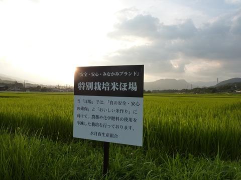 tokusai01