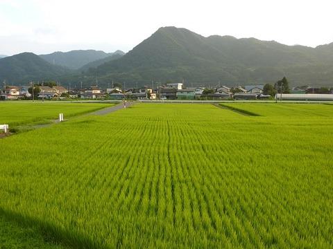 tokusai02
