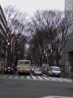 20090123_ayumi_asagaya1.jpg