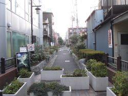kouenji_20100107_02.jpg