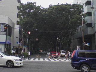 090705_ayumi_asagaya_nakasugi1.jpg