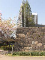 常磐橋公園 桜と石垣