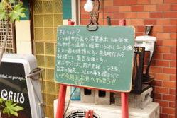 nishi_sakura4.jpg