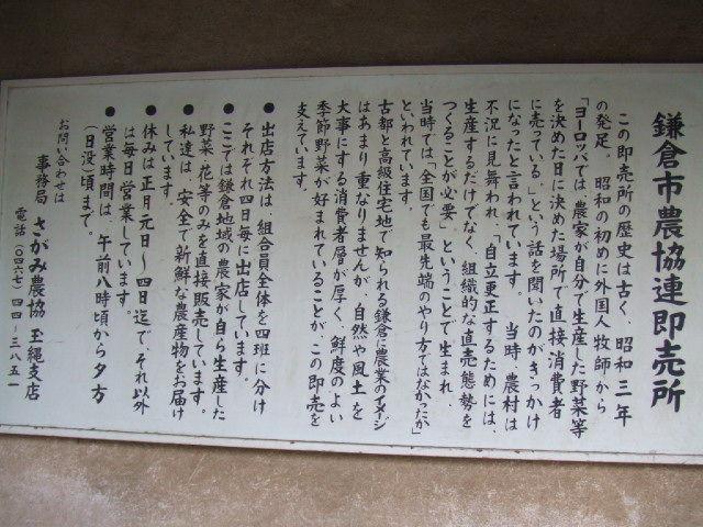 midori-kamakura.JPG
