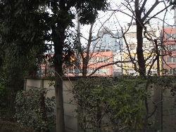kouenji_20100107_10.jpg