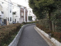 kouenji_20100107_08.jpg