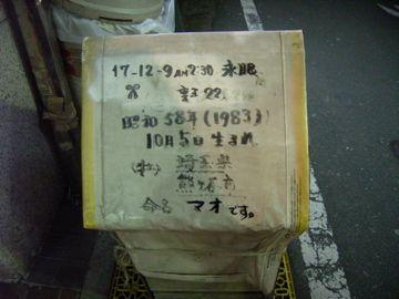 20080309.jpg