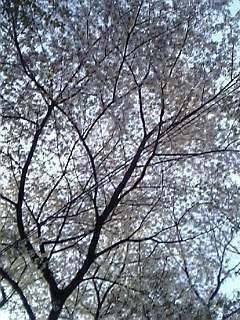 05-04-10_15-35.jpg