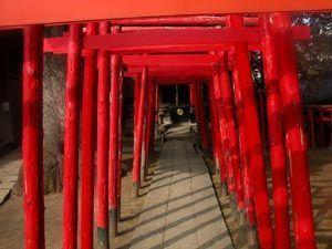 torii001.jpg