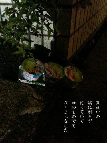 IMG_0407_ORI.jpg