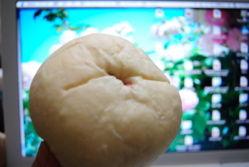 nishi_sakura11.jpg