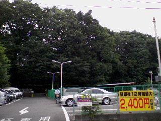090705_ayumi_asagaya_yashikimori3.jpg