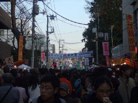 boro_tori.jpg