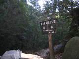 爺の杉の立札