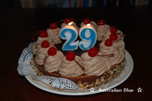 Cake 8/1