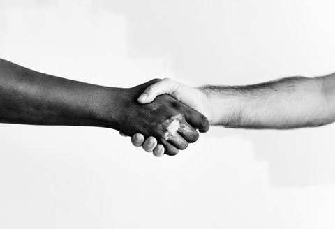 agreement-black-and-white-color-1389098