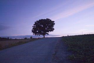 1296-2008-hokkaido-15