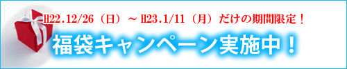 ジュブレ恒例の、新春&福袋キャンペーンを2011年もやります!