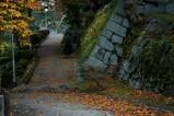 岩手公園の紅葉-3