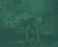 Manet-green