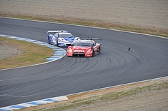SuperGT 2009 Rd.9  もてぎ 446