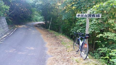 10_林道の途中