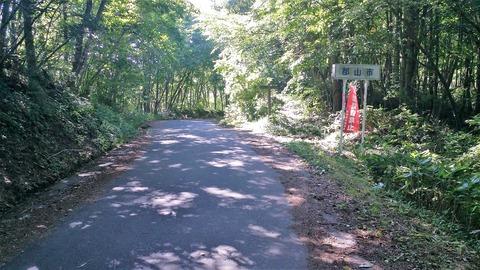 11_林道の途中2