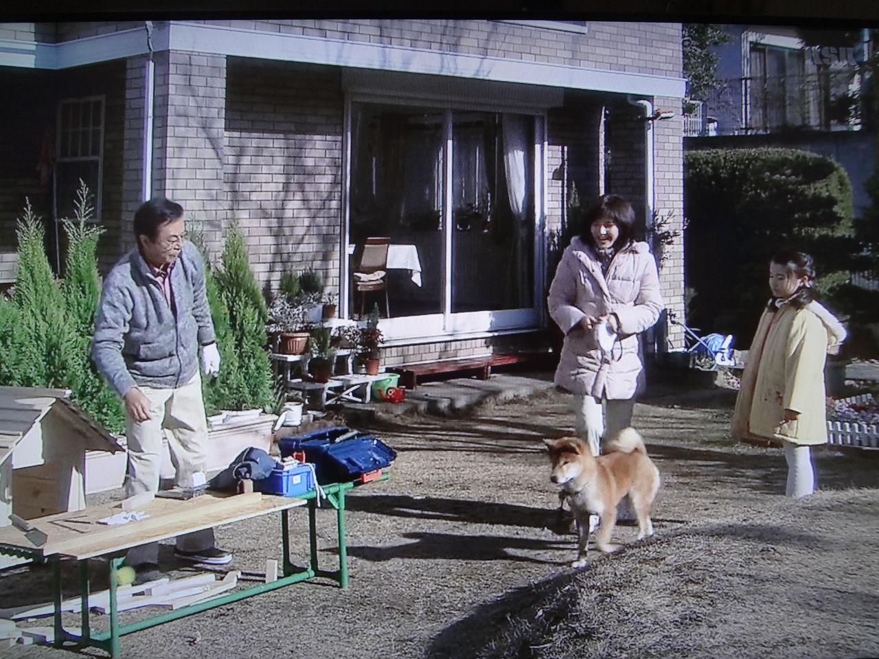 成瀬正孝の画像 p1_24