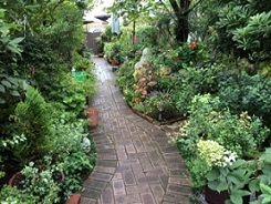 山野家の庭