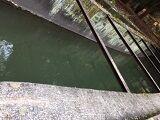 疎水の流れ
