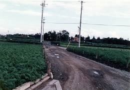 西部秋津団地の昔の道路