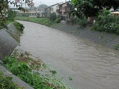 台風4号による柳瀬川増水その2