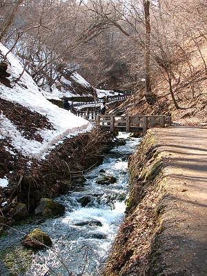 白糸の滝から流れ出る川