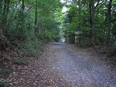 智光山公園 雑木林の中の道