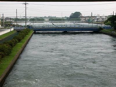 利根大堰 取水後の分水