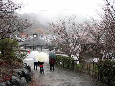 桜山森林公園第一駐車場周辺