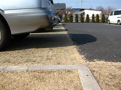 芝生の駐車場