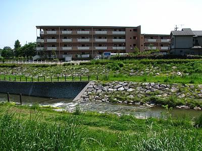 右岸河川管理境界 柳瀬川
