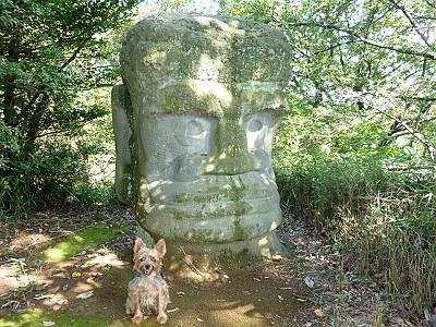 大多羅法師(ダイダラボッチ)と犬