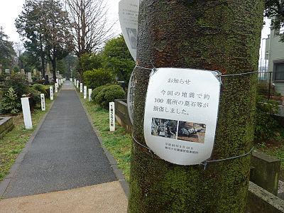 墓所の損傷あり(雑司ヶ谷霊園)
