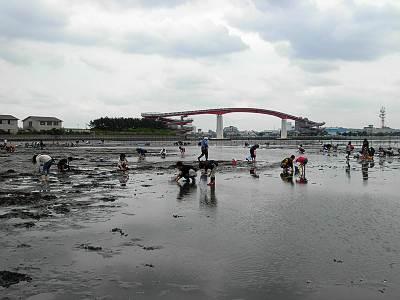 木更津海岸で潮干狩り(後ろは中の島大橋)
