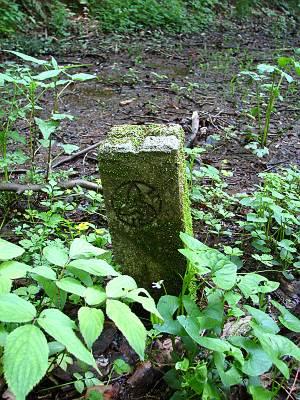 ブドウ峠下の湿地にあった所沢市の石柱