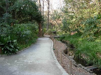 おとめ山公園の園内
