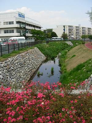 しんやま親水広場