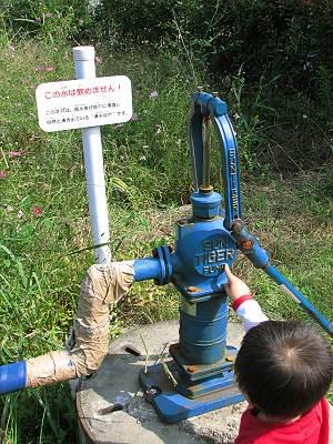清瀬せせらぎ公園にある湧水井戸