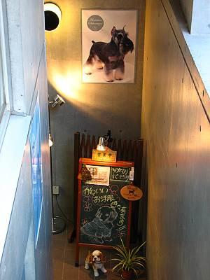 犬床屋入口