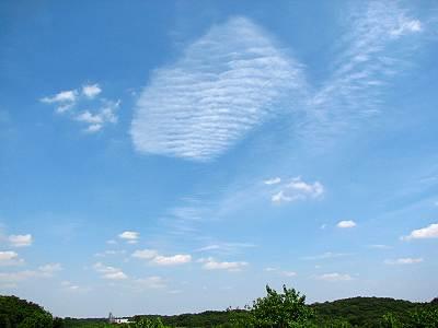 ブドウ峠(比良の丘)から見た空と雲