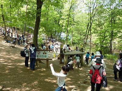 国営武蔵丘陵森林公園わんぱく広場「冒険コース」
