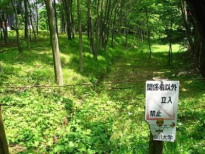 早稲田大学へは立ち入り禁止