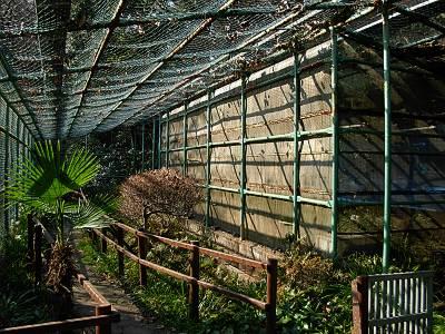 おとめ山公園のホタル養殖地